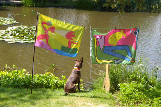 fingo and flags